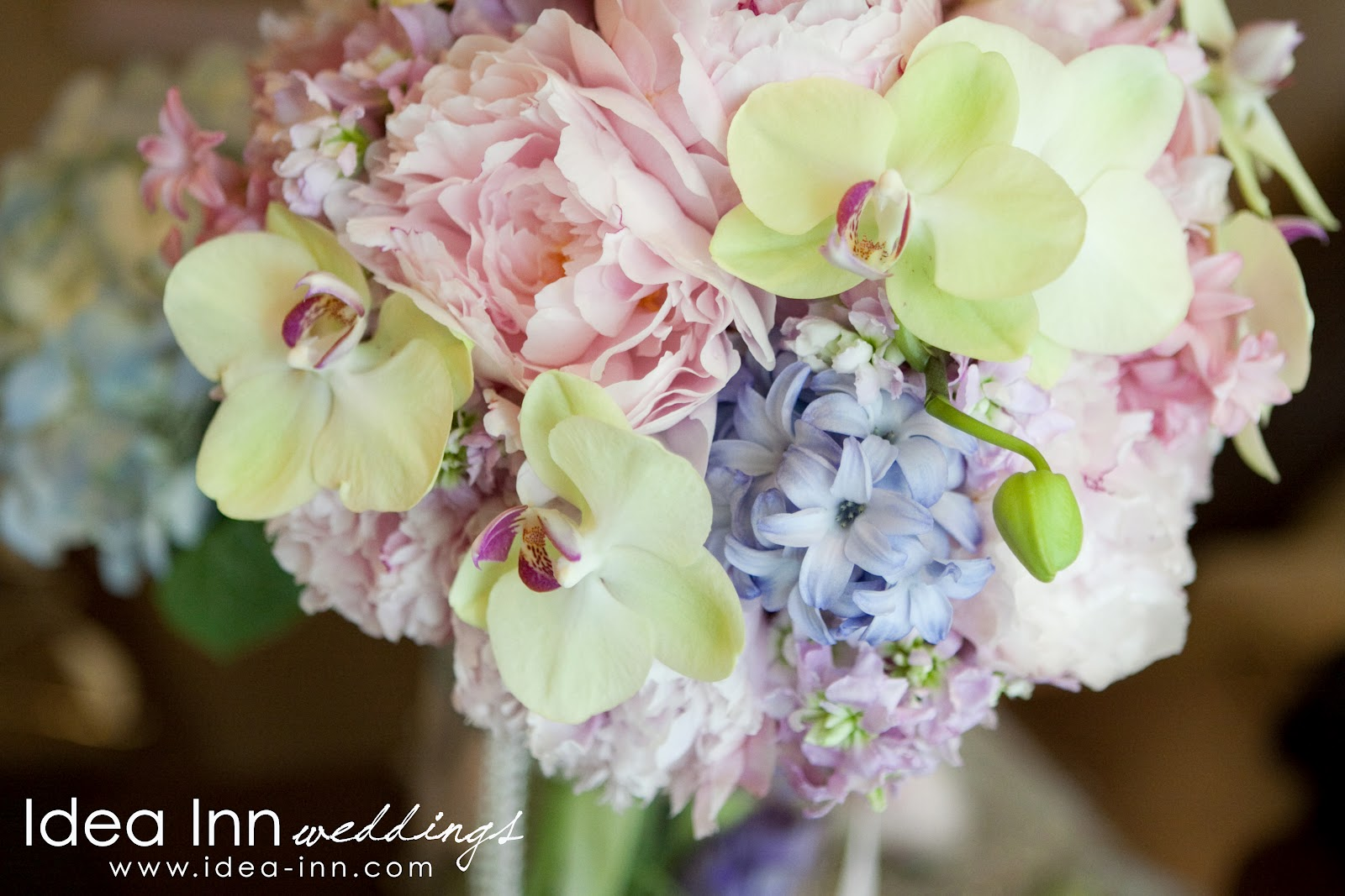 Hitched wedding planners singapore wedding hand bouquets ideas wedding hand bouquet phalaenopsis whimsical izmirmasajfo Gallery