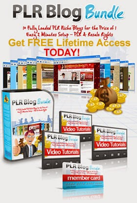 PLR Package FREE Lifetime Access