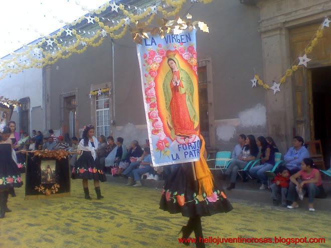 La Virgen que Forjo la Patria (Estandartes)