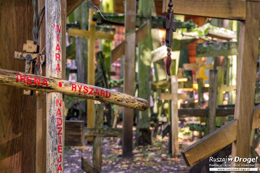 Las krzyży na Świętej Górze Grabarce