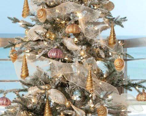 snow dusted coastal Christmas tree