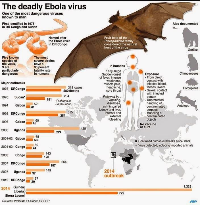 Ebola Signs Symptoms to Transmit  | Ebola Virus Disease