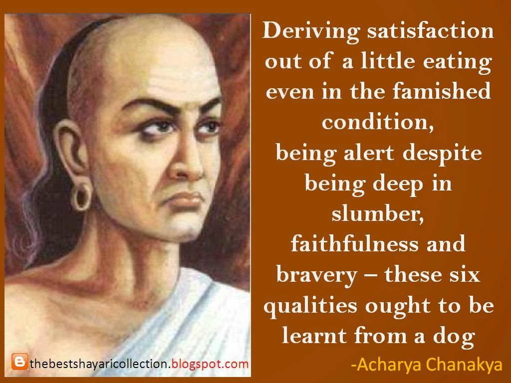 Chanakya quotes - Learning from the dog HD Photo wallapers
