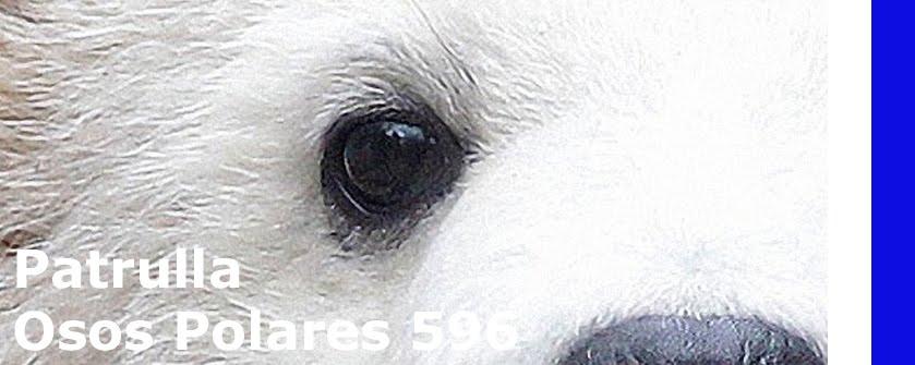 Patrulla Osos Polares 596