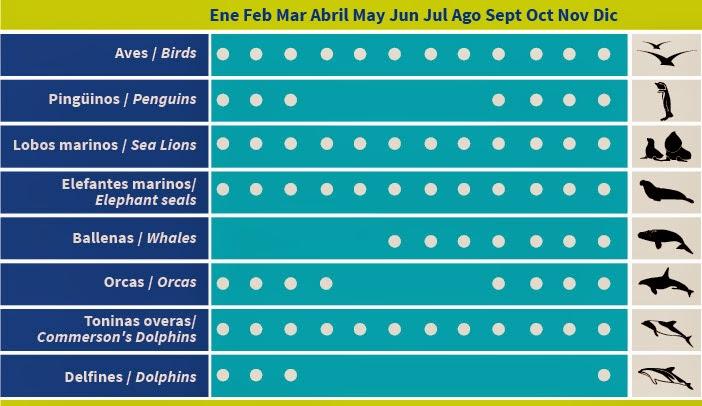 Calendario de fauna de Península Valdés