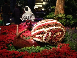 This is one snail I wouldn't mind having in my garden!