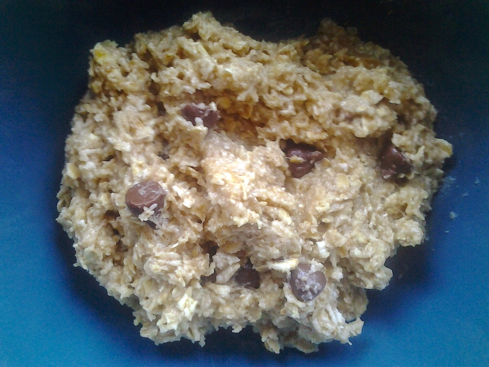 chocolate chip cookie dough oatmeal recipe