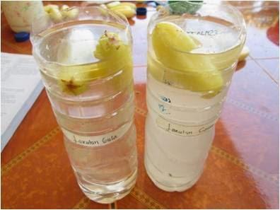Laporan Praktikum Kimia Tekanan Osmosis