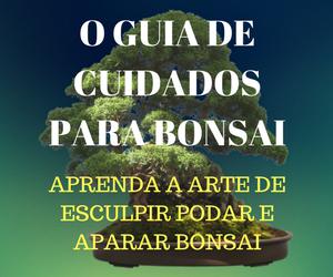 Este e-book foi desenvolvido passo a passo para pessoas quer aprender as técnicas de bonsai
