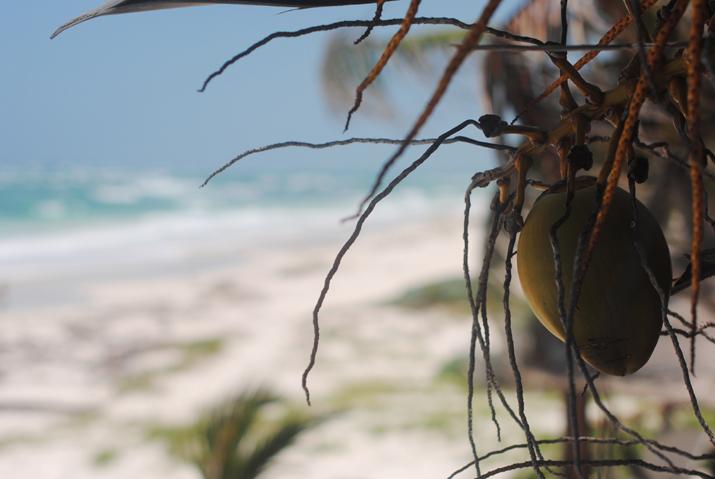 Playas del Caribe: Tulum. Cabañas delante del mar. Fotos en el blog de moda de Mónica Sors, México