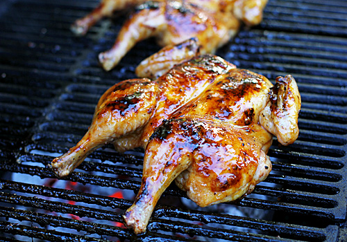 Roasted Butterflied Chicken With Cardamom And Yogurt Recipes ...