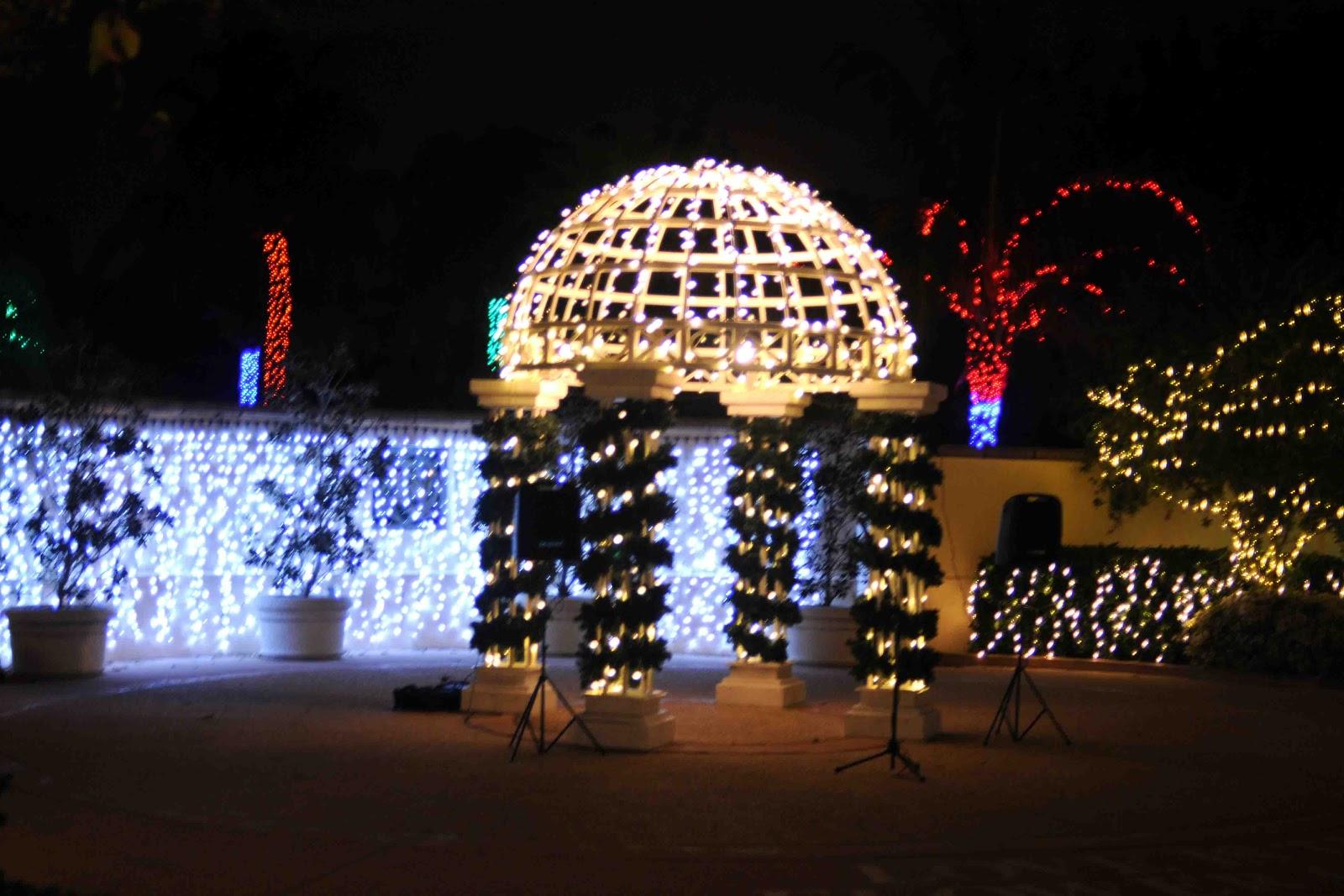 Gonna stuff a chicken florida botanical gardens holiday - Florida botanical gardens christmas lights ...