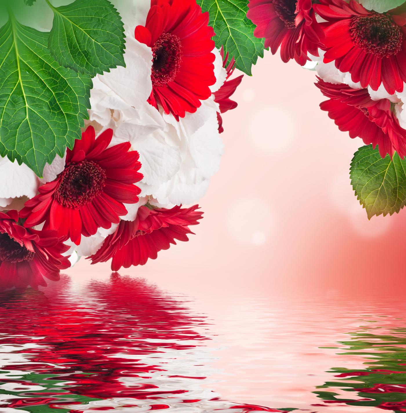 FLORES HERMOSAS Imagenes, fantasía y color Facebook - Imagenes De Flores Fantasia