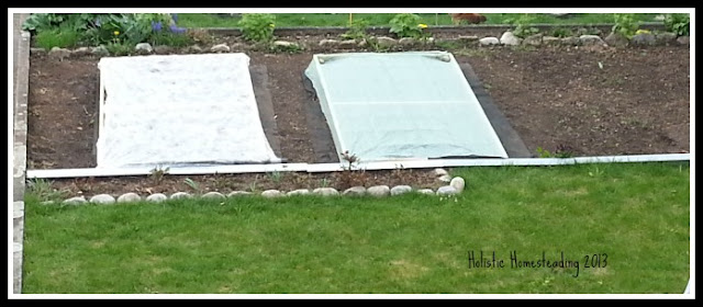 Square foot garden how to plant