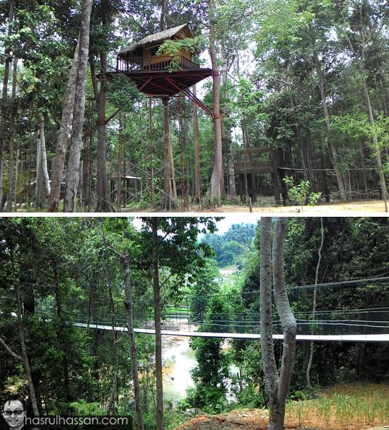 Perkampungan Gajah Kenyir Sungai Telemong