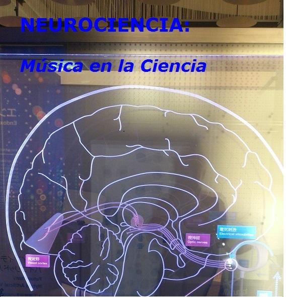 Neurociencia. Música en la ciencia.