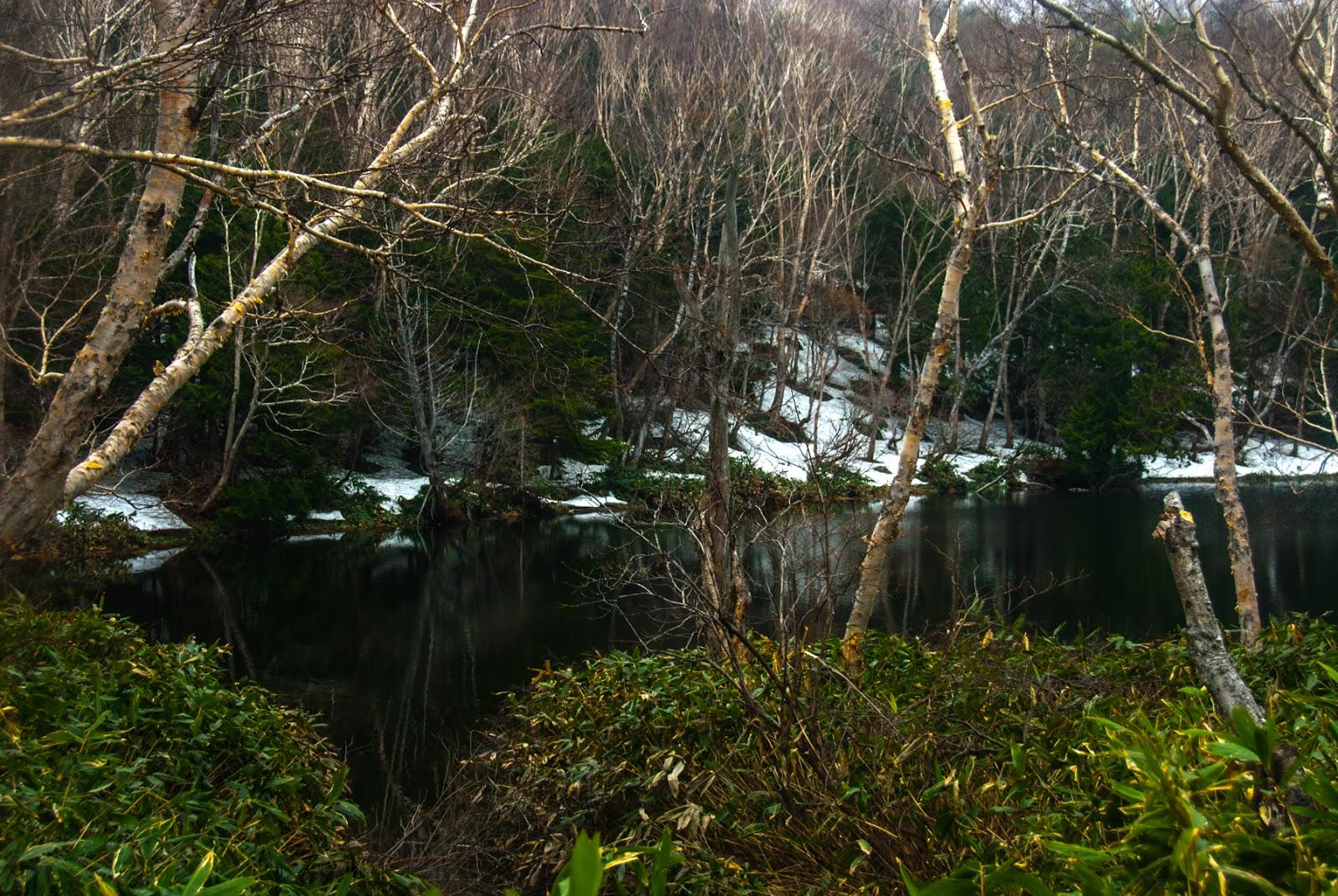 静かで澄んだ池