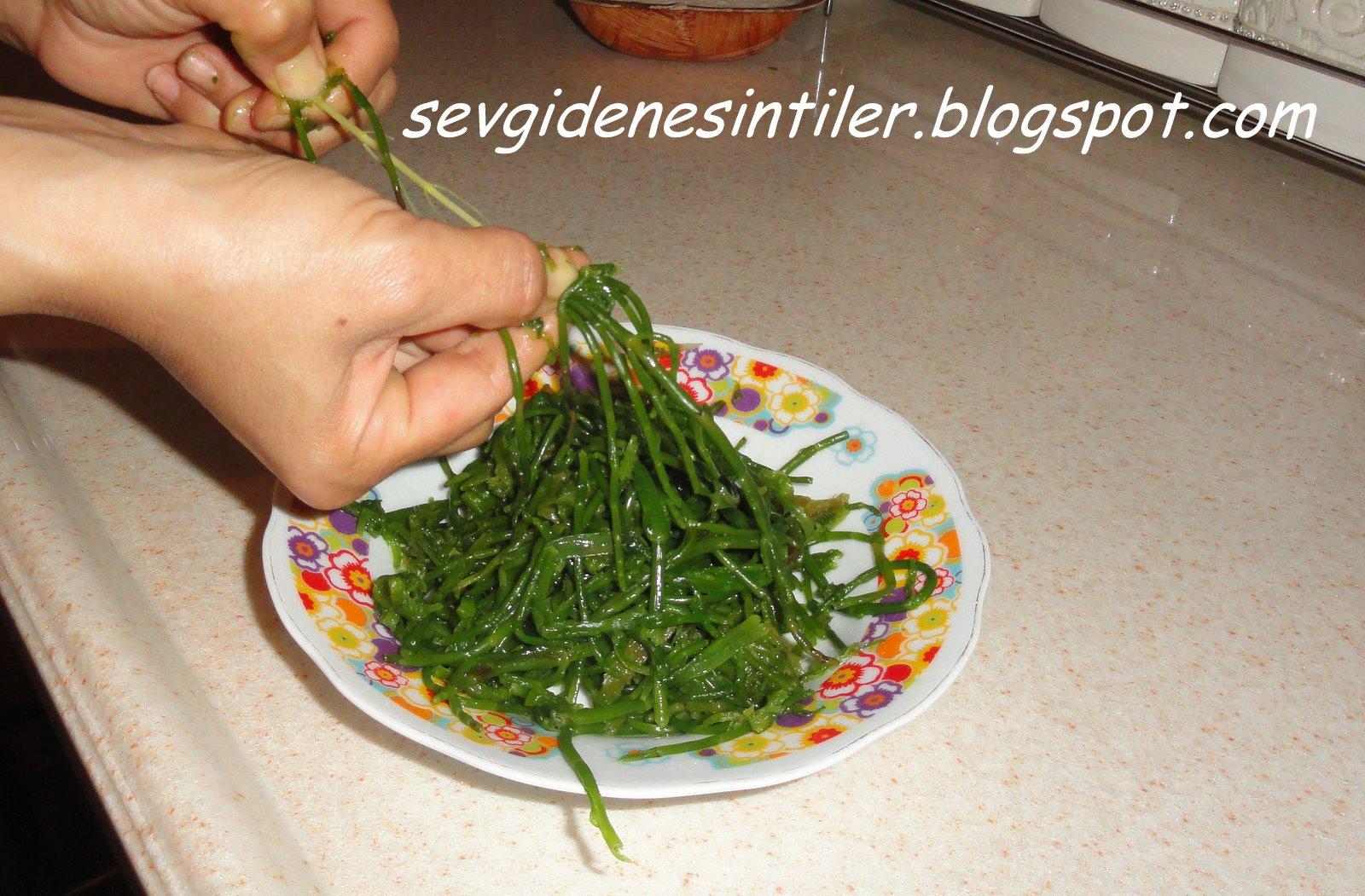 Deniz Börülcesi Salatası