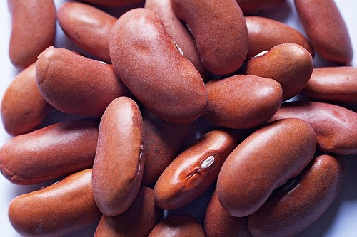 Kidney Beans (Heart Healthy Resources)