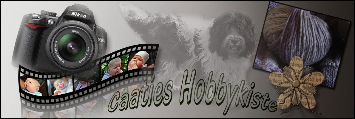 Caaties Hobbykiste