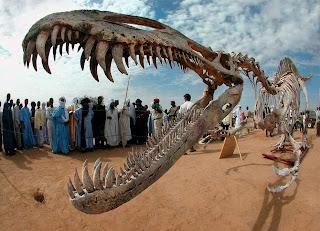 Dinosaur-Bones-Middle-East-Africa.jpg