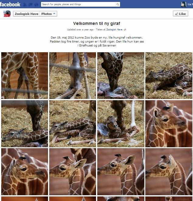 velkommen til facebook
