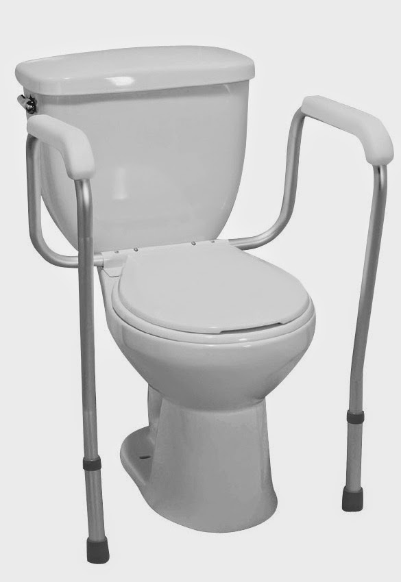 Ideas Toilet Safety Rails