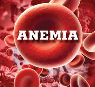 alimentos-bons-para-anemia