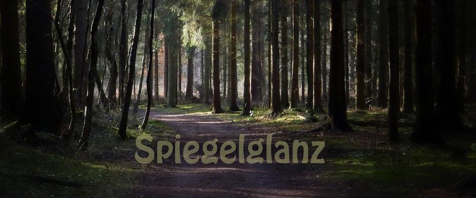 Spiegelglanz.Blogspot.com