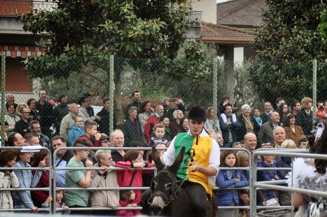 The Mussodrome, Donkey Race, Romano d'Ezzelino, Veneto, Italy-5
