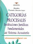 CATEGORIAS PROCESALES