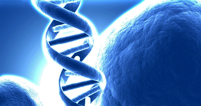 Newly Discovered DNA Biological Clock Could Get Us Closer to Immortality