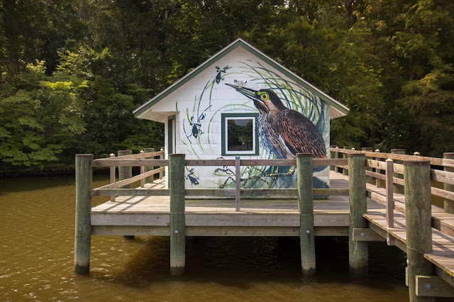 Roman painter and muralist, Hitnes, is embarking on an epic three-month journey that will channel the artistic works of ornithologist, painter and explorer, John James Audubon.