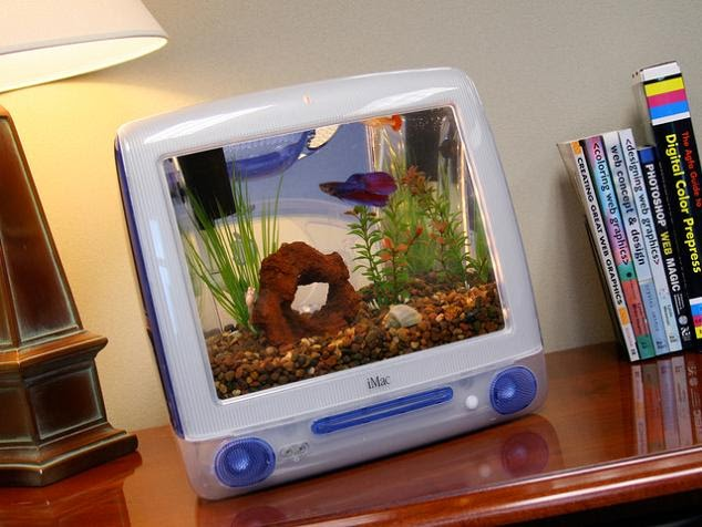 Coolest Fish Bowls and Awesome Aquarium Designs (15) 13