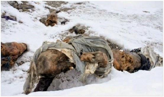 12 gambar dasyat gambar mayat mayat pendaki gunung