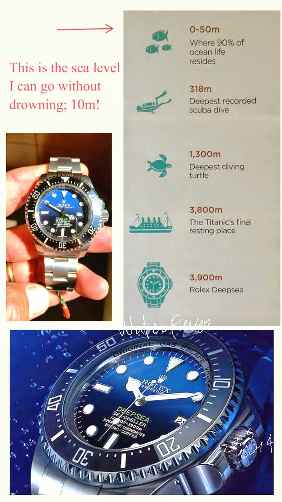 New Deepsea has arrived Hong kong.