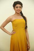 Pranitha latest dazzling pics-thumbnail-13