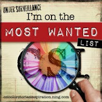 CSI Most Wanted