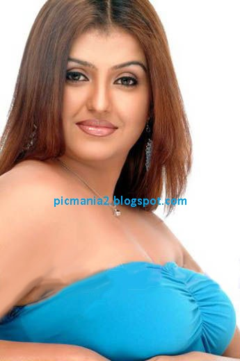 south indian acterss sona  hot pics
