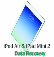 iPad Air, iPad Mini 2 data recovery