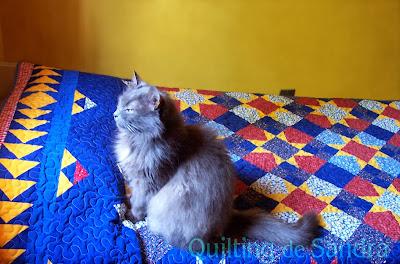 """Quilt """"Estrellas del Sur"""" sobre la cama con gatita"""