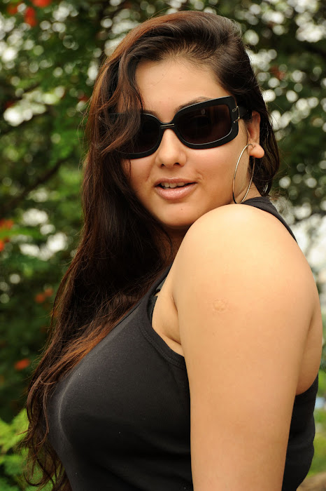 namitha from sukra movie launch, namitha new hot images