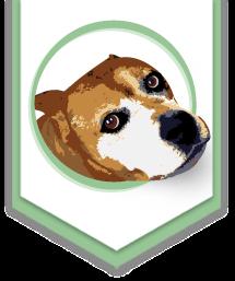 Animales de Asís: Adopción de mascotas y animales necesitados  en Heredia (Costa Rica)