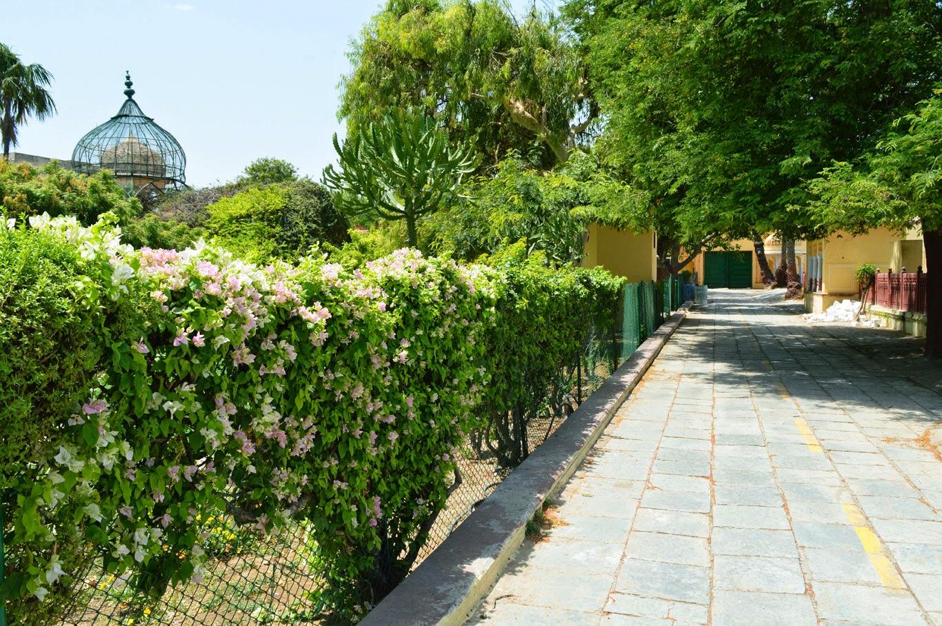 Sanjay Photo World: Garden backgrounds for Photoshop