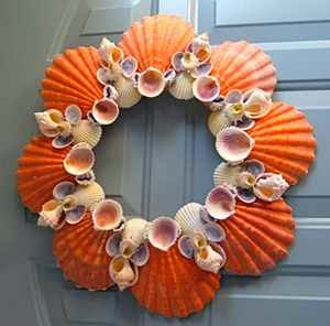 Try dying some of your shells a cheery color then glue for Seashell wreath craft ideas