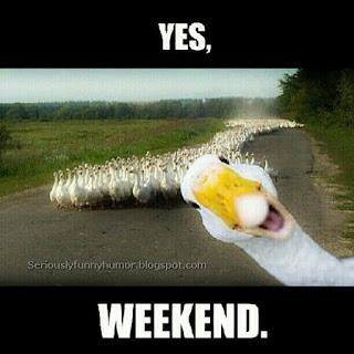 Yes, weekend - ducks photo.