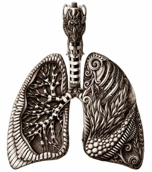 03-The-Lungs-Alex-Konahin-Stylised-Anatomy-Intricate-and-Unique-Drawings-www-designstack-co