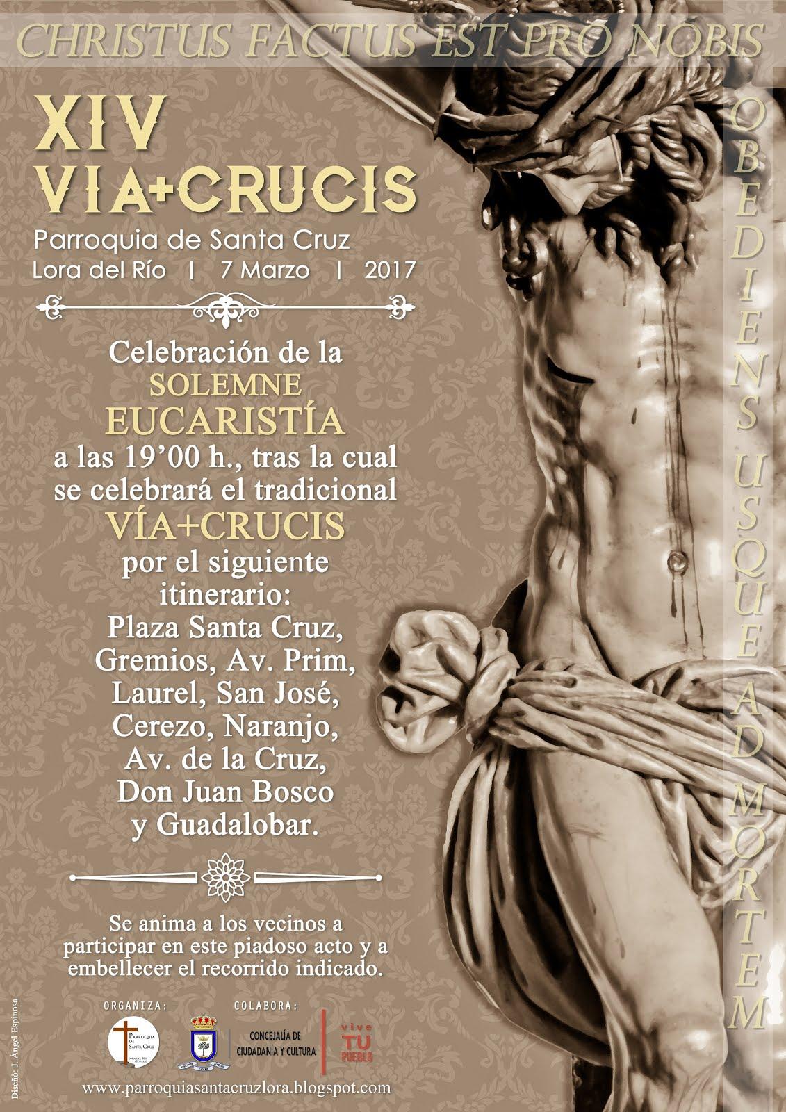 XIV VIA+CRUCIS