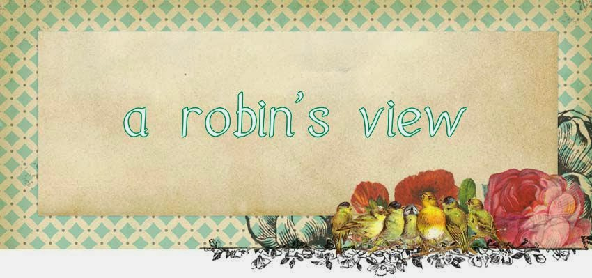 A Robin's View
