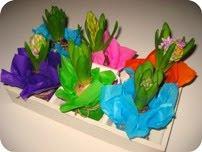 Hyacinter i silkepapir DIY